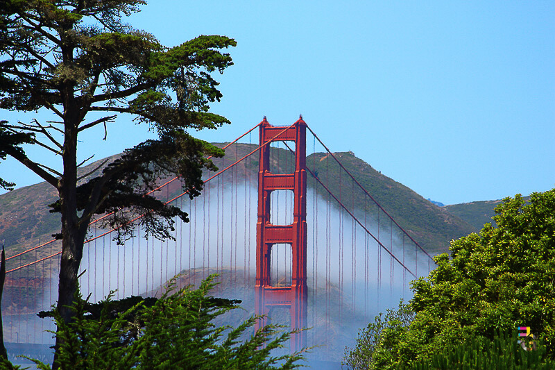 A Journey Of Colour - Golden Gate Through Fog Photo